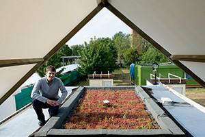 Fertilizer Plants